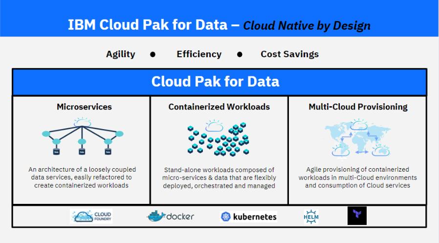IBM Netezza Performance Server
